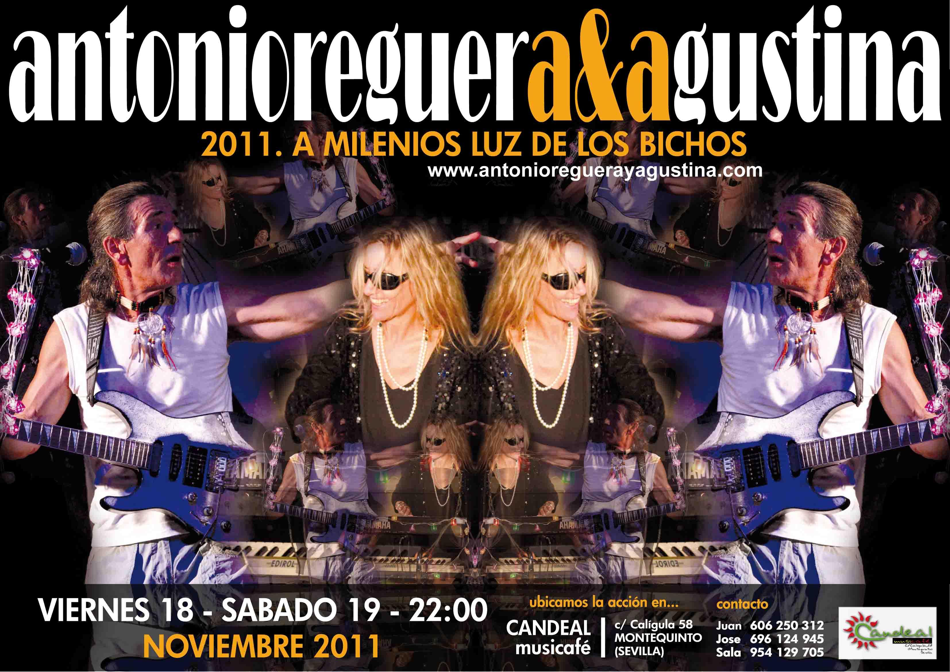 blog CANDEAL Montequinto V18yS19_Nov_11.jpg